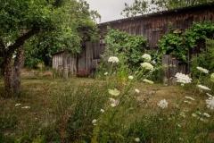Obstgarten vor der Scheune  -  Foto: A. Declair